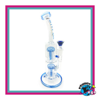 Gili Glass w/ Double Tree Perc